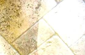 how to clean shower grout mildew black mold in shower grout how to clean mildew and