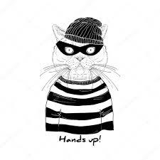 Resultado de imagem para gato ladrão