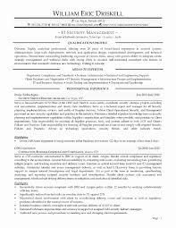 Professional Profile Resume Template Beautiful Resume Skills And