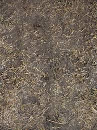 Black Soil With Dried Grass BackgSeamless Texture Of The Ground With