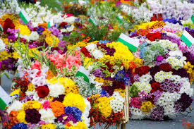 You may order flowers directly from our web site, or by calling our home office. Medellin S Wonderful Flower Festival Travellocal