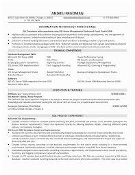 Sql Skills Resumes Sql Skills In Resume Developer Russiandreams Info