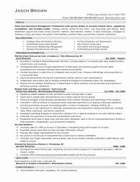 13 Luxury Executive Resume Samples Sample Template And It Fair