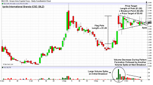 Ignite Stock Chart Ignite Stock Is Forming The Perfect Bull Pennant Chart