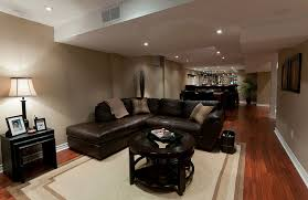 Basement Living Rooms Creative Interesting Inspiration