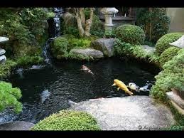 beautiful koi pond design ideas you
