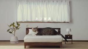 Cats Are Totally Feline This High End Furniture Line