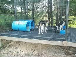 dog kennel outdoor dog kennels