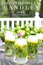 easy tutorial for making diy citronella candles with herbs for your summer outdoor entertaining they smell wonderful and repel mosquitoes naturally