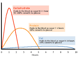 Food Conversion To Blood Glucose Diabetes Support