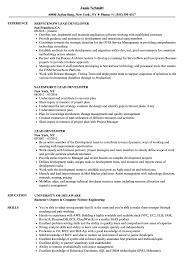 Lead Developer Resume Samples Velvet Jobs