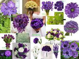 Purple and green wedding colors Teal Wedding Purple And Lime Green Wedding Planning Discussion Forums Special Decorations Majestic Weddingbee Boards Spectacular Purple And Lime Green Wedding Planning Discussion Forums