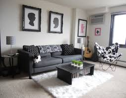 rug on carpet ideas. Charming Apartment Living Room Rug And 28 Best Area On Carpet Images Home Design Ideas D