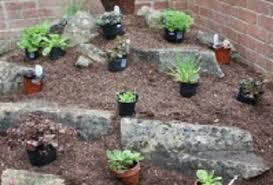 Google Garden Design Adorable Create An Alpine Rockery Amateur Gardening