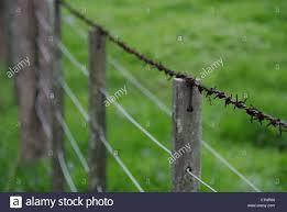 wire farm fence. Boundary Farm Fence Rusty Barb Wire