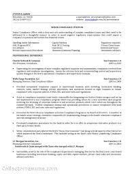 Compliance Officer Resume Tips Free Resume Templates