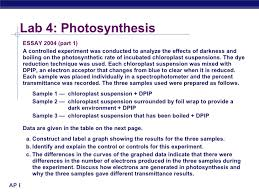 photosynthesis essay lab review photosynthesis vs cellular home rsaquo photosynthesis essay lab review