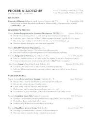 Youth Pastor Resume Gorgeous Youth Leader Resume Youth Minister Resume Sample Best Of Youth