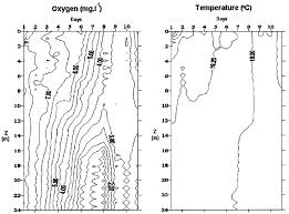 Isolines Charts Of Dissolved Oxygen And Temperature During