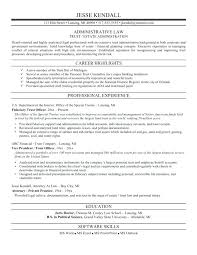 legal resume law resume legal resume examples counsel lawyer  legal