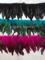 Red Rooster Feathers Canada