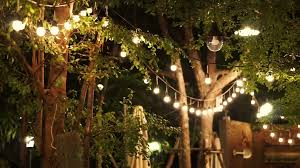 festival decorative light night party in the garden stock from romantic outdoor lighting at