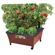 patio raised garden bed grow box kit with watering