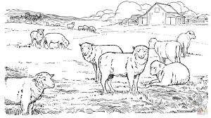 Small Picture Coloring Pages Sheep Herd Coloring Page Free Printable Coloring
