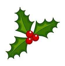 Image result for holly berries