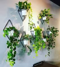 plant wall ideas how to build