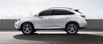 lexus 2015 white. Brilliant 2015 Inside Lexus 2015 White 1
