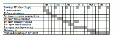 Example Of A Gantt Chart For A Research Proposal Timeline Scientist Sees Squirrel