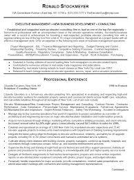 Professional Business Resume Template Sarahepps Com