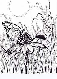 Free Flower Coloring Pages To Printy Adults Games For Kids Easy