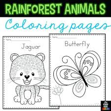 Rainforest Animals Coloring Pages Preschool Porongurup