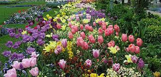 garden center nj. Gray\u0027s Garden Center \u0026 Landscaping, Watchung Bridgewater NJ Nj J