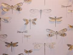 Small Picture Dragonfly wallpaper from Porters Australia Also obsessed with
