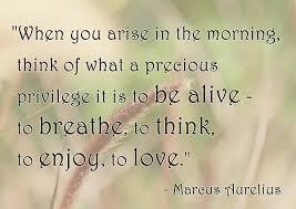 Life Is Precious Quotes Impressive A Precious Privilege Best Life Quotes