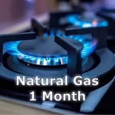 Mcx Natural Gas Pivot Level Live Chart Shubhlaxmi Commodity