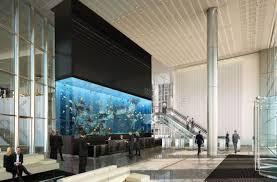 office aquarium. large home aquarium europeu0027s largest installed in london office