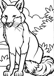 Small Picture Drawing Fox Coloring Pages Bulk Color