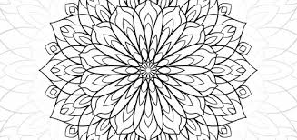 Small Picture Adult Coloring Pages Flowers Cecilymae
