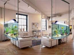 aquarium office. Aquarium Office