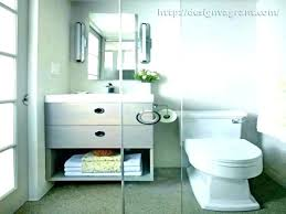 Simple Basement DesignsSmall Basement Bathroom Designs Interesting Amazing Small Basement Bathroom Layout Puleos Bathroom Ideas