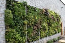 Vertical Gardening Ideas With Brick Walls