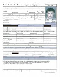 Criminal Record Template Criminal Record Reports Reliable Background Checks Best Background