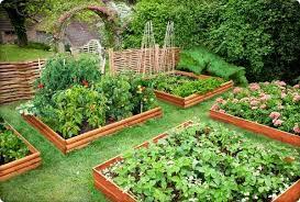 vegetable garden ideas decorative