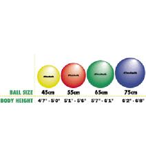 Body Ball Size Chart Thera Band Standard Exercise Ball