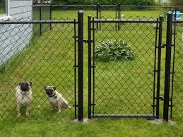 fence ideas for dogs.  Ideas New Dog Fence Ideas Throughout For Dogs N