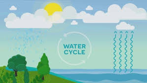 water cycle definition and steps